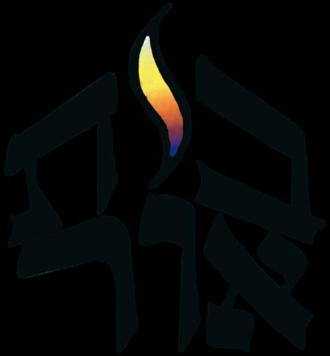 TBO_Logo_Color-removebg-preview-1